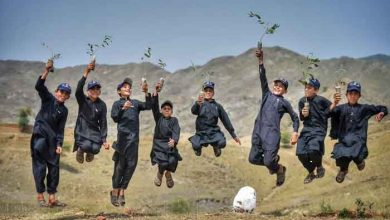 Photo of بلین ٹری سونامی: خیبرپختونخوا میں محکمہ تعلیم مہم کاحصہ