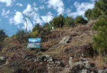 Photo of جنگلات کی کٹائی ایک سنگین مسئلہ مگر اس پر قابو پانا ممکن ہے